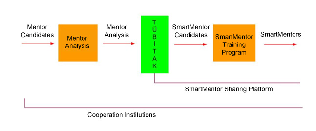 SmartMentor Program